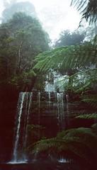 86700021 (olliethewino) Tags: waterfall australia tasmania