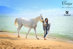 Untitled (Monia Allouche) Tags: morning blue light shadow summer sky horse woman sun sunlight white beach nature girl fashion lady walking landscape cheval amazing sand waves walk femme dream naturallight sunny arabic arab glam moment dreamer abaya