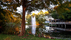 Fountain at Sunset (Chris C. Crowley) Tags: trees sunset sunlight reflection water fountain landscape dock pond outdoor scenic cypress railing magnoliapark cypressknees southdaytonaflorida fountainatsunset