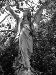 'Memories Of Our Dear Departed' (Miranda Ruiter) Tags: blackandwhite monochrome statue highgate graveyard cemetaries london