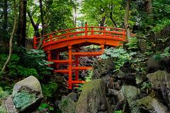 Tsuten-kyo (TheAmazingShrinkingMan) Tags: koishikawakorakuen japanesegarden bridge