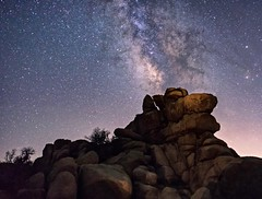 Milky Way rising over Joshua tree national park (lucmena) Tags: california park ca summer sky usa tree nature vertical night way stars landscape photography losangeles long exposure desert joshua outdoor scenic national milky