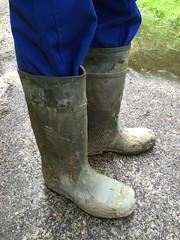 Dunlop Purofort (Noraboots1) Tags: dunlop dunlops purofort wellies rubber boots gummistvler gummistiefel arbejdstj