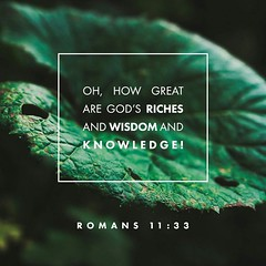 """Romans 11-33 """"O the depth of the riches both of the wisdom and knowledge of God! how unsearchable are his judgments, and his ways past finding out!"""" (@CHURCH4U2) Tags: pic bible verse"""