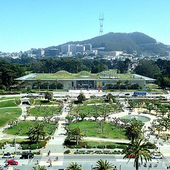 Elevated (MarquisDeRad) Tags: sanfrancisco goldengatepark museum square view squareformat californiaacademyofsciences hamontower iphoneography instagramapp uploaded:by=instagram foursquare:venue=49cc413df964a5205a591fe3
