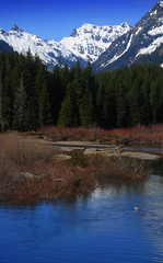 View toward Mt Thomson from near Snoqualmie Pass, Washington (Damon Tighe) Tags: usa mountain snow mountains west america river washington spring stream pacific northwest north thomson northamerica wa cascade