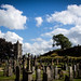 242 - Paul Dumbleton - Graveyard