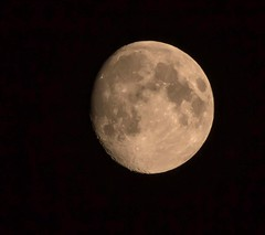 Waxing gibbous moon 93% illuminated (Themagster3) Tags: moon astronomy canon600d