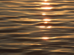 Life is... (Amiela40) Tags: life light sunset water gold movement eau or couleur vie chaude