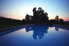 May 28 (Bruno Fazenda) Tags: sunset reflection tree water pool swim day afternoon sony may clear f3 24mm 16mm nex sel16f28 sel16m28