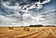 dänischer Bauernhof