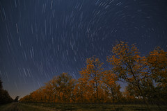 October Sky (Nick Burwell) Tags: autumn fall stars nightscape fallfoliage astrophotography startrails 5diii rokinon14mmf28