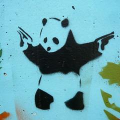 Stencil (oerendhard1) Tags: bear urban streetart art graffiti rotterdam stencil panda pistol lyceum grafisch