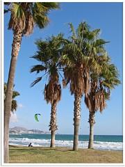 Malaga/Andalusien 2013