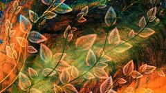 art-leafs