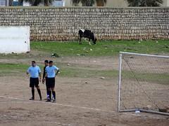 -        (fchmksfkcb) Tags: real football soccer union morocco maroc fantasia maghreb marruecos marokko abdellah realmadrid rma jadida fusball moulay eljadida nonleague maghrib groundhopping amateursoccer ittihad amateurfootball amateurfusball tihad stademoulayabdellah ouledghadbhane kasbahmoulayabdellah mosquemoulayabdellah realmoulayabdellah