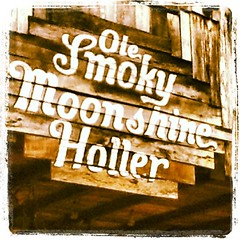 moonshine (rebeccahannam) Tags: usa tourism sign america square typography squareformat smokey gatlinburg hillbilly tenessee moonshine lordkelvin iphoneography instagramapp