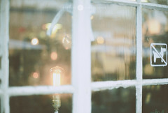Rainy day* Canon ae1* (Mizulys*) Tags: light food tree chicken film window water rain plane canon photography 50mm glasses book drops ae1 f14 wing fresh reflect melancholy dim pure mizulys