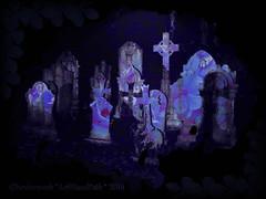 FLOWERS OF ROMANCE (with Hidden Ethyl & Hidden Fiend!) (Cheyberpunk!) Tags: white black flower strange graveyard dark death skull grey weird purple surreal headstones textures odd april gravestones bizarre fiend pil ethyl 2014 publicimagelimited lefthandpath gotthic theflowersofromance cheyberpunk hiddenethyl hiddenfiend twxturesonly212