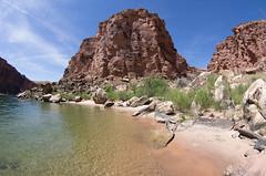 Lower Cathedral Wash, Arizona (ArneKaiser) Tags: arizona autoimport cathedralwash coloradoriver hikes lowercathedralwash marblecanyon slotcanyon unitedstates flickr