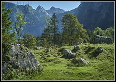 L1005074  - Berchtesgadener Land, Zwischen Obersee und Knigssee, (Max-Friedrich) Tags: bayern bavaria natur landschaft obersee knigssee berchtesgadenerland leicam8 elmar24