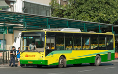 秋日阳光/Autumn Sunshine (KAMEERU) Tags: guangzhou bus public transportation gz6112sv1