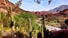 San Juan - Argentina (leahrdt) Tags: nature landscape warmplace
