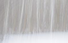 edwinloyolaNewYorkPortfolioReviewWinter05 (Edwin Loyola) Tags: autumn winter summer abstract fall nature seasons fineart fourseasons icm esl intentionalcameramovement edwinsloyola edwinloyola edwinloyolaphotography eslphotography