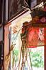 Quiet momentum [Bali, Indonesia] (Melvinia_) Tags: bali indonesia 50mm bokeh indonésie canoneos450d digitalrebelxsi