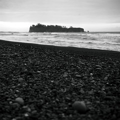 A bunch of round rocks (that analogue guy) Tags: washington bronica 25 olympics olympicnationalpark chs rialtobeach adox sqai 11100 roundstones pyrocathd adoxefkechsart25 film:iso=25 film:brand=adoxefke film:name=adoxefkechsart25 zenzanon80mmf28ps photographersformularypyrocathd developer:brand=photographersformulary developer:name=photographersformularypyrocathd filmdev:recipe=10747