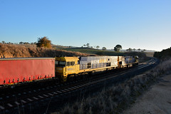 Early Morning Pacific National duo (Jungle Jack Movements (ferroequinologist)) Tags: yass junction overpass underpas lindsay brothers pn pacificnational nr72 nr96 nr classnr nrclass sunrise morning early hume freeway australia locomotive loco locos power grunt performance diesel electric rail railway railroad rails line bogie engineer train engine appliance kw traction run freight load pull gunzel gunzelling gunzeller transit authority australian 列車 培养 la traîne die eisenbahn treno el tren электровоз 内燃机车 station set platform pickup carriage trip stabled ballast class belair duo faulder jungle jack