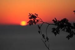 IMG_6995 (sjj62) Tags: sunset seascape doorcounty sunsetting doorcountywi 40d ellisonbaywi ellisonbluffstatenaturalarea