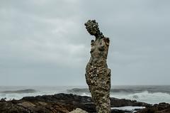 forsaken mermaid (ironpoison) Tags: old sea shells broken statue uruguay women mermaid strom abandonned sirene
