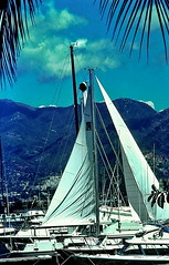 Acapulco Yacht Club (gerard eder) Tags: world ocean travel paisajes beach pool mxico club strand america landscape mexico coast meer pacific yacht north central playa exotic acapulco tropical coastline landschaft vacations vacaciones reise yachting ozean rlaub pazijischer
