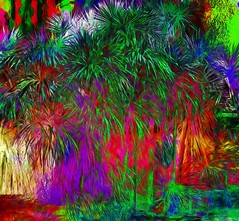 Palms in the Park (abstractartangel77) Tags: palms brighton stannswellgardens