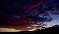 Garden Glow (Helen Vercoe) Tags: sunset moonrise nightsky southaustralia middleton nikond600