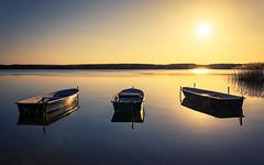 Abendstimmung am Useriner See (wiwenir) Tags: deutschland 2016 userin mritznationalpark