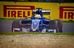 Marcus Ericsson. 2016 Australian Grand Prix (Dom Puglisi) Tags: f1 sauber formula1 australiangrandprix marcusrericsson