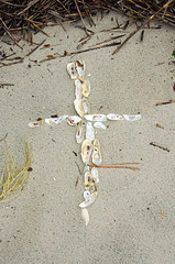Oyster Shell Cross DSC_0062_edited-1 (John Dreyer) Tags: shells beach nikon cross christian crucifix oysters christianity oystershells nikond5100 photocreditjohnjdreyer copyright2016johnjdreyer