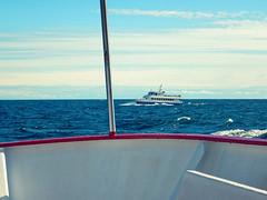 Boat Trip (mlbp372) Tags: trip boot boat ship rgen schiff ruegen schifffahrt sassnitz
