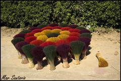 Flor de incienso (Mar Santorio) Tags: d50 nikon handmade vietnam hoian saigon incienso