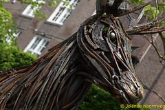 joodse_wijk_21 (Jolande, steden fotografie) Tags: amsterdam nederland hermitage architectuur noordholland joodsewijk