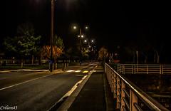 Pont sur le Sichon (Vichy). (Crilion43) Tags: arbres france divers eau herbe vichy canon auvergne allier paysage ciel nature nuages rflex sapin thuya