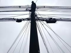 Eletricidade (Alexandra Deitos) Tags: street city sky urban poste sopaulo sp contraste eletricidade fio