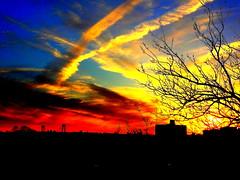 New York Sunset (dimaruss34) Tags: sunset summer newyork brooklyn wow image brilliant marinepark dmitriyfomenko