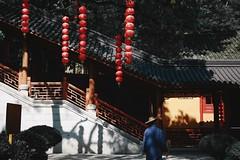 (Chaoqi Xu) Tags: china city travel architecture lanterne canon asian temple photography eos photo asia foto shanghai monumento buddha chinese beijing culture buddhism monastery hangzhou  lantern   fotografia      viaggio  architettura cina   xu monastero citt  cinese beni chinesestyle 2016       culturali 600d buddismo  chaoqi