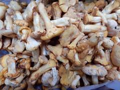 Mushrooms, Turnips, Borough Market, Southwark, London (4) (f1jherbert) Tags: food fish london vegetables fruit mushrooms nikon market herbs boroughmarket sausages coolpix borough southwark pate nikoncoolpix southwarklondon boroughmarketlondon s9700 boroughmarketsouthwark boroughmarketsouthwarklondon coolpixs9700 nikons9700 nikoncoolpixs9700