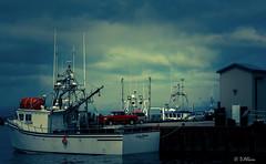 Bateaux de pche (danielallain657) Tags: sky canada nikon bateaux ciel nuages paysage 55200 septiles luminosit d7100 provincedequebec nikond7100
