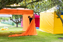 cricket_2015-50.jpg (Fingal County Council) Tags: fingal newbridgehouse flavours donabate pwp flavoursoffingal fingalcoco fingalcountycouncil