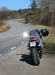 S (Look at the Birdie!) Tags: triumph curve daytona arai mybike 955i lnnavgen